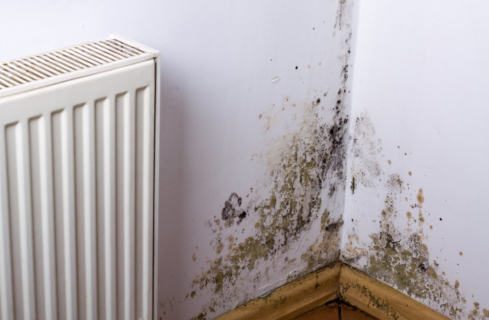 Are Dehumidifiers Safe?